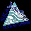 Sea Ilfracombe Maritime Festival Logo